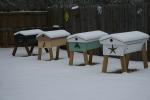 TBH bee yard, January 2011