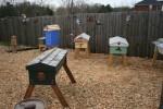 Honey-Sun Apiary - March 2011