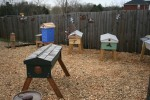 Honey-Sun Apiary - March 2011