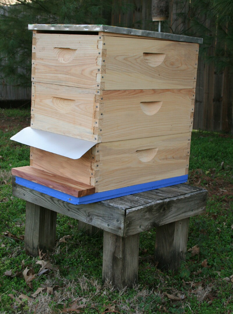 While We Are Also Running A Few Top Bar Hives ...